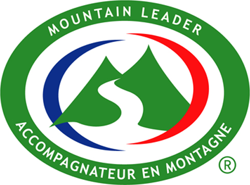 Logo mountain couleur