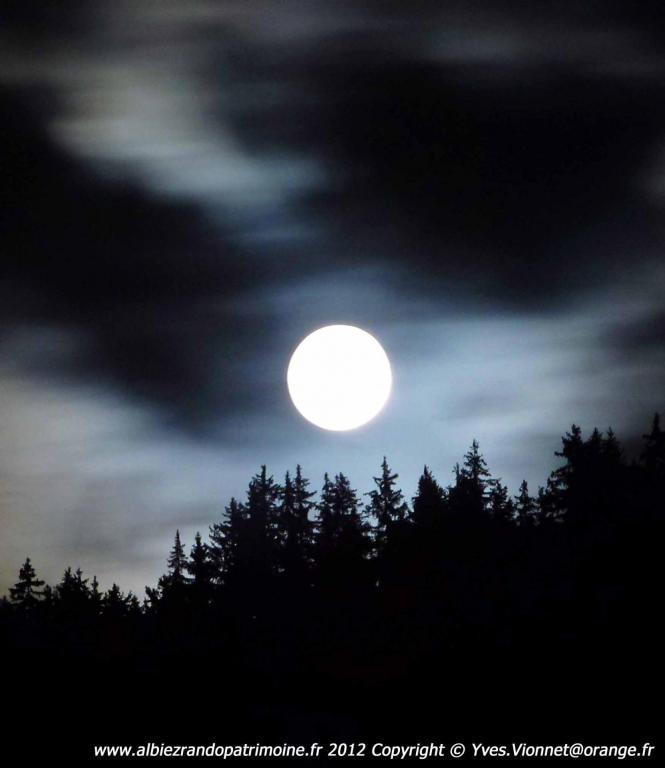 Nocturne en forêt + flambeaux