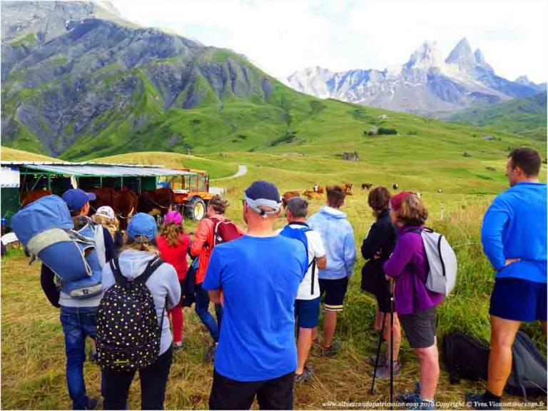 10) Balade gourmande en alpage - FACIM